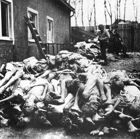 Bildergebnis für dead holocaust corpses images